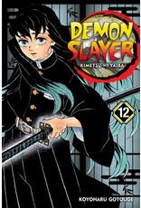 Demon Slayer Volume 12 (Engelstalig)