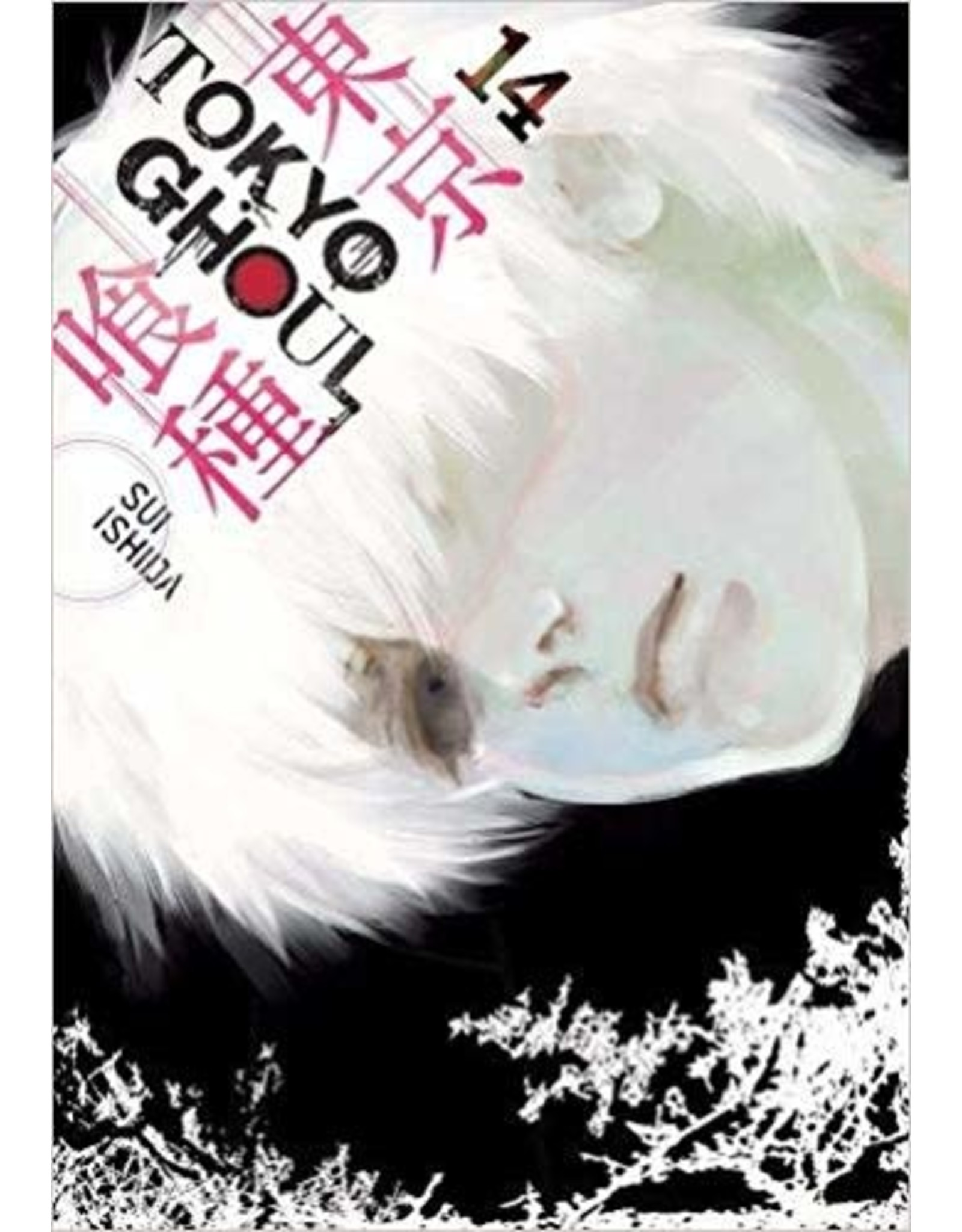 Tokyo Ghoul 14 (Engelstalig)