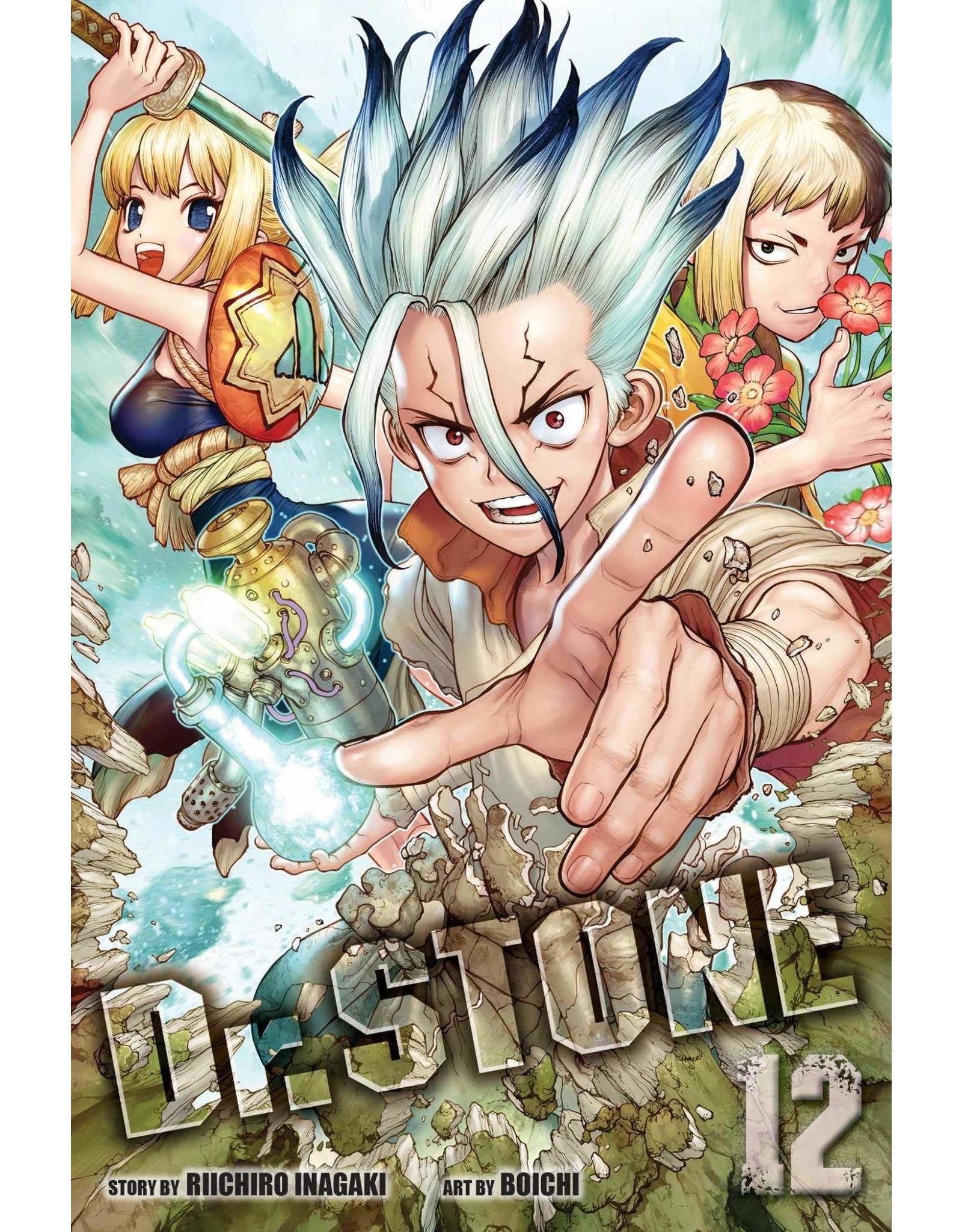 Dr. Stone 12 (English version)