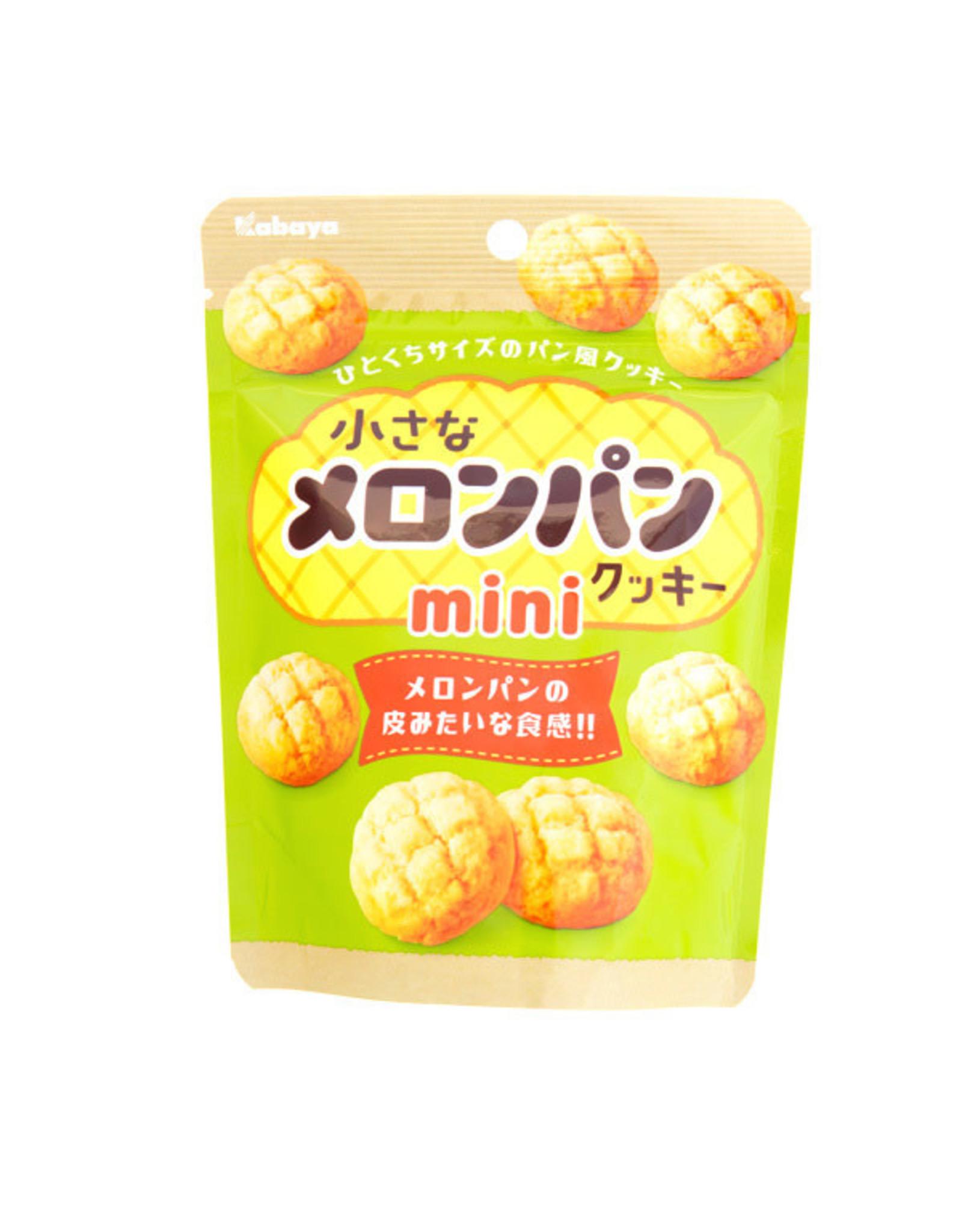 Melon Pan Mini Cookies - 41g