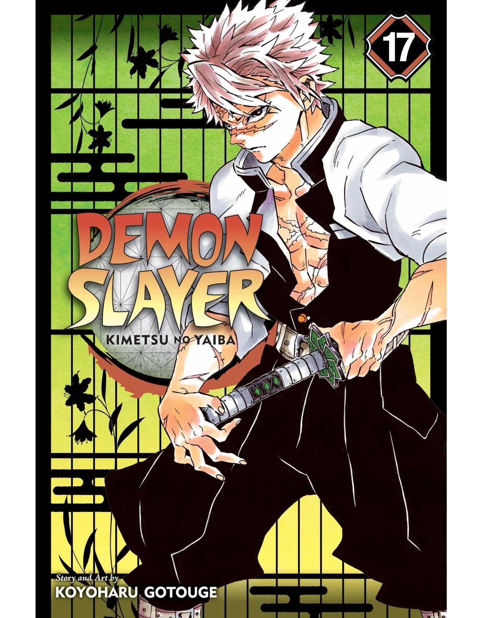 Demon Slayer Volume 17 (Engelstalig)