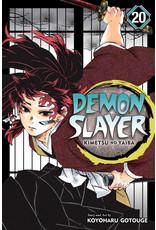 Demon Slayer Volume 20 (Engelstalig)