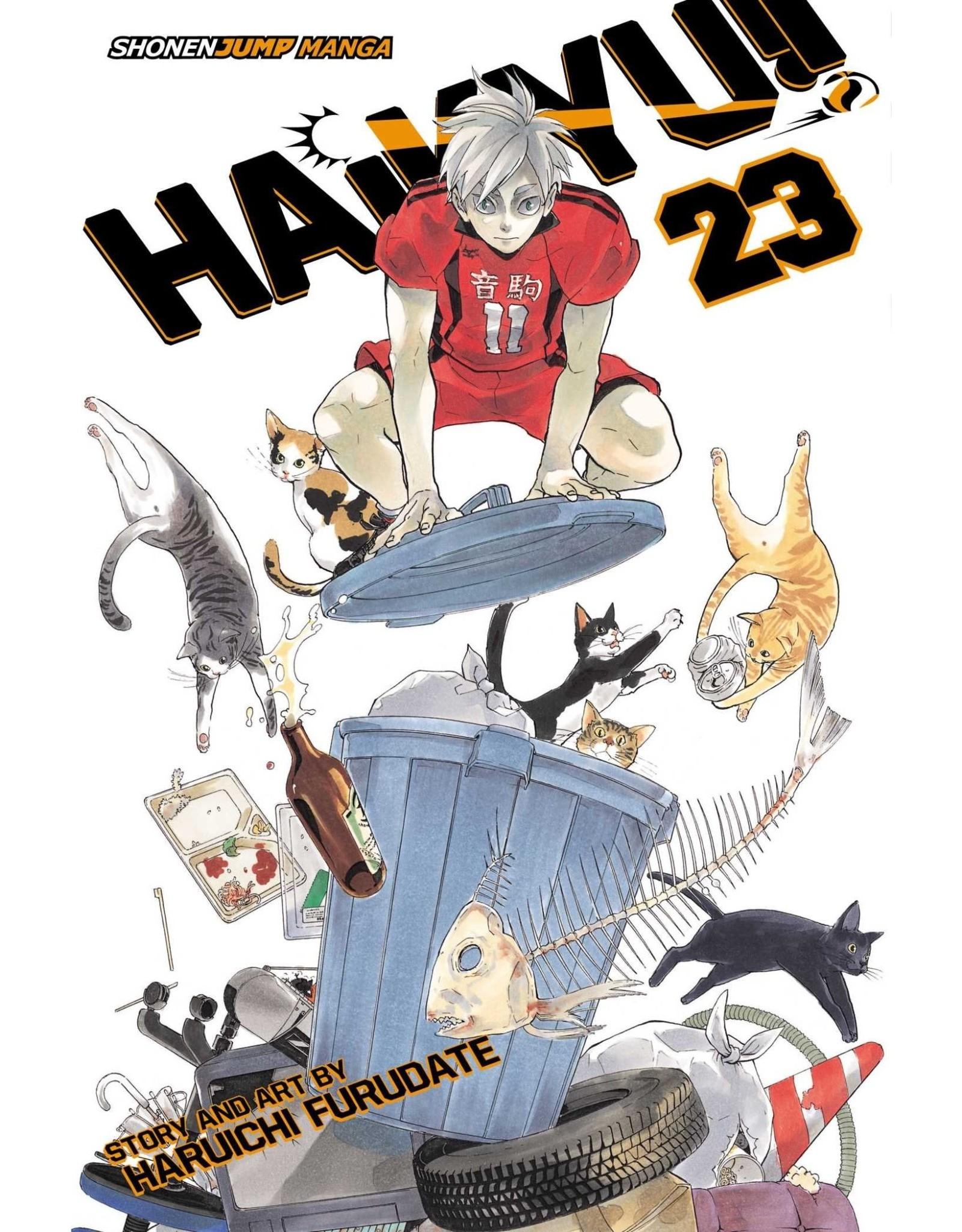 Haikyu!! 23 (Engelstalig)