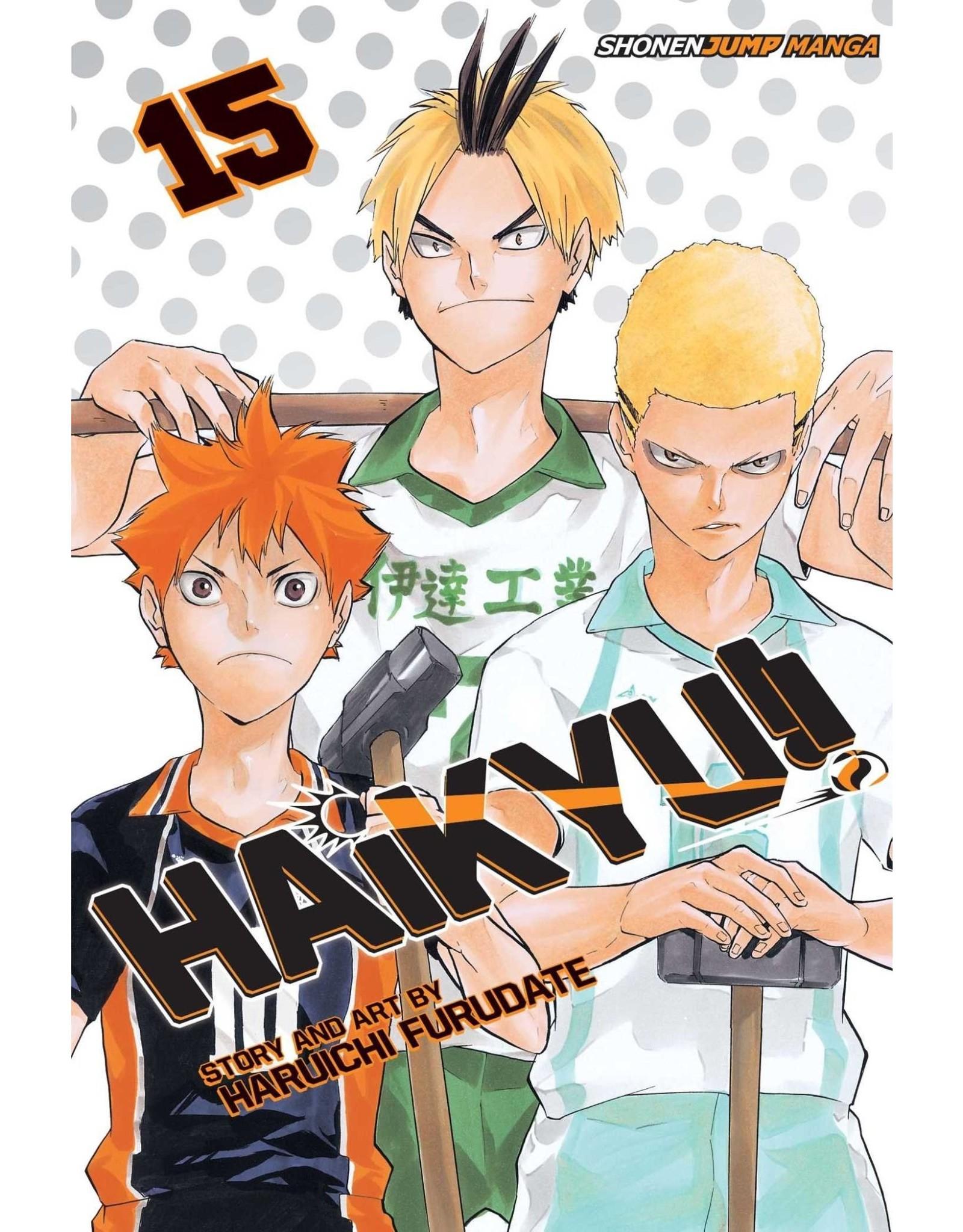 Haikyu!! 15 (Engelstalig)