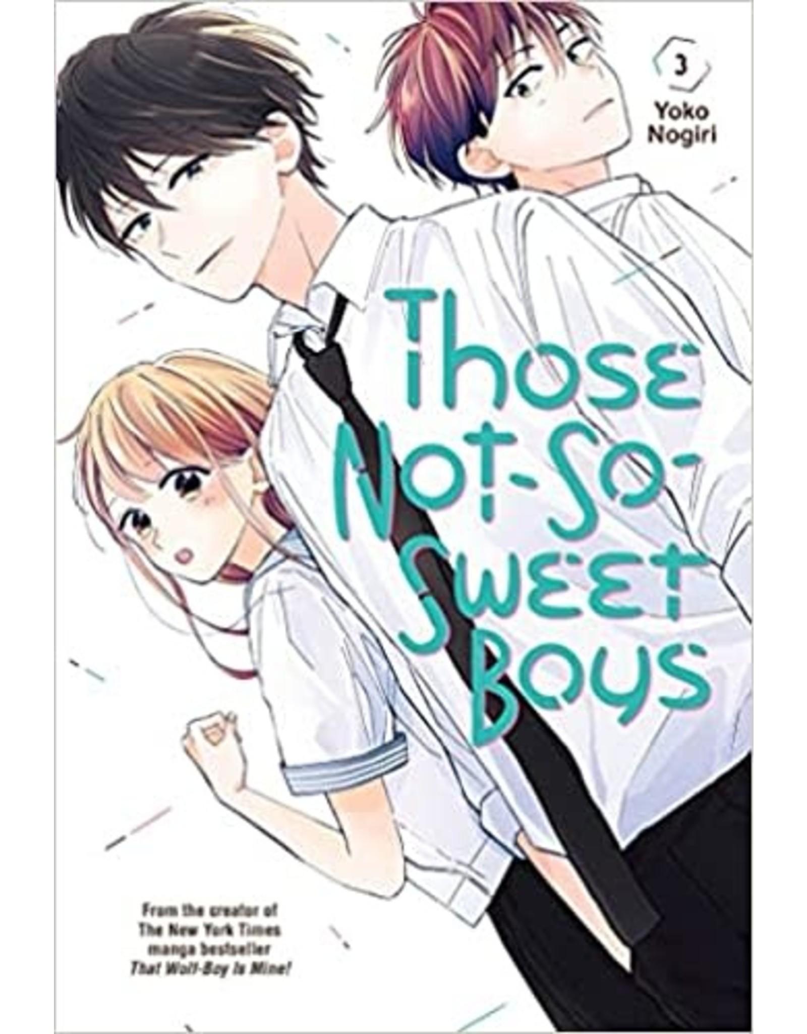 Those Not-So-Sweet Boys 3 (English) - Manga