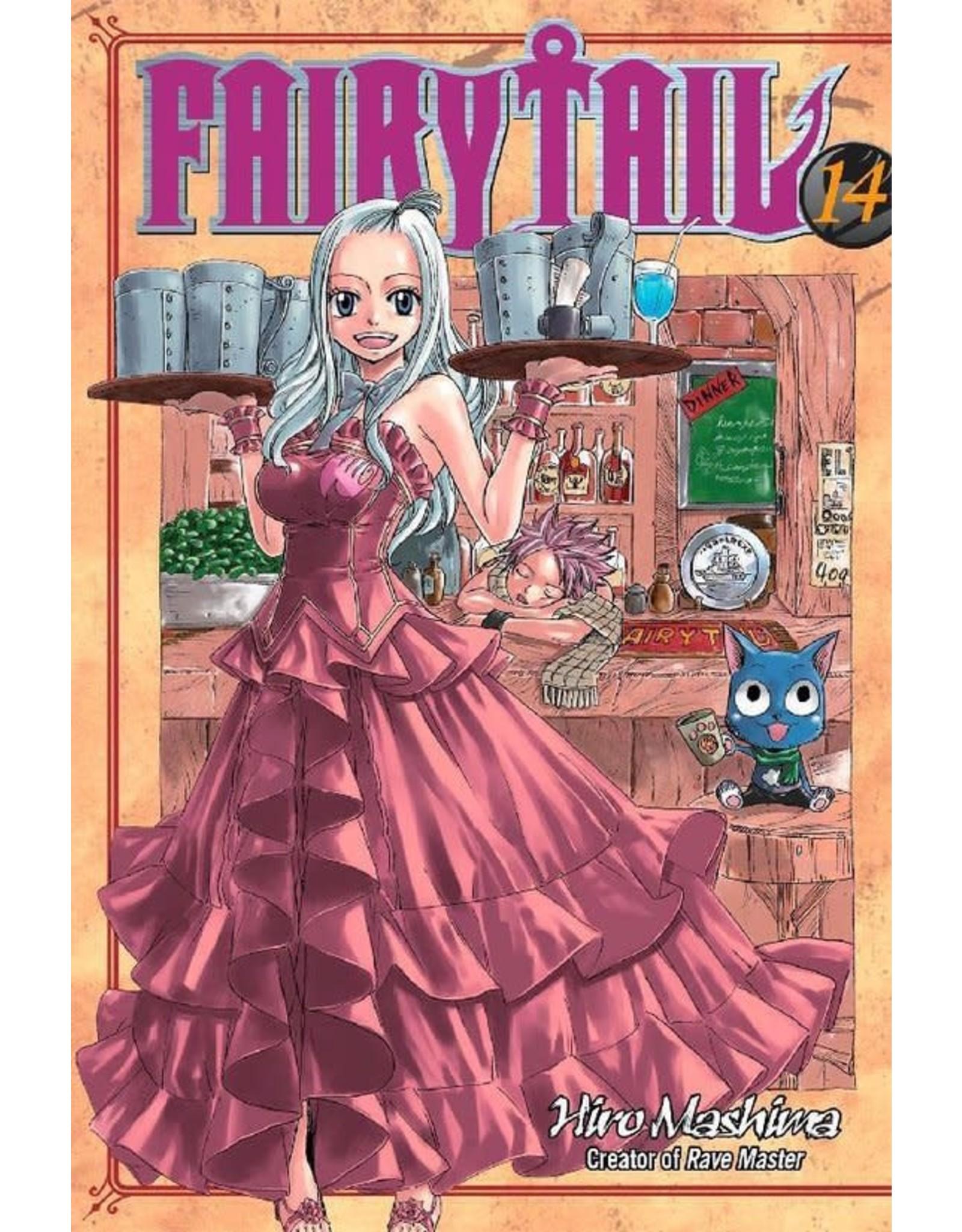 Fairy Tail 14 (Engelstalig) - Manga