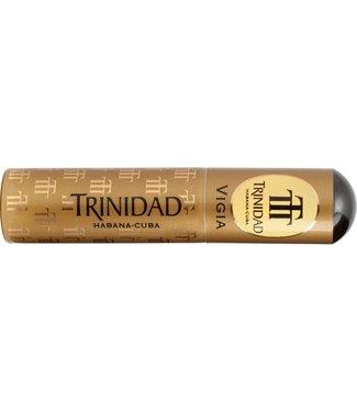 TRINIDAD TRINIDAD VIGIA TUBOS AT