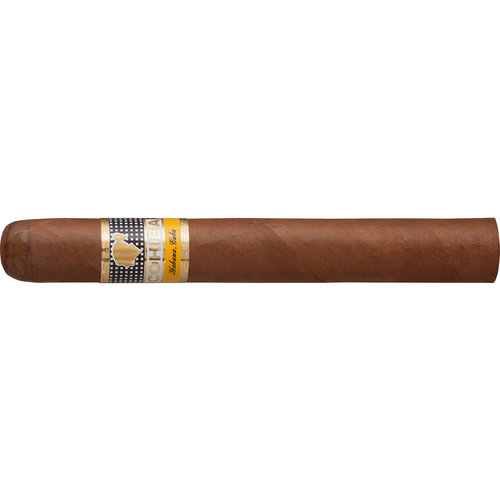 Cohiba Siglo IV  Zigarren
