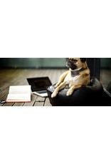 Anti-Blafband - Hondentrainingshalsband - Verstelbaar anti-blafapparaat voor honden - 7 niveau - waterdicht - M68E