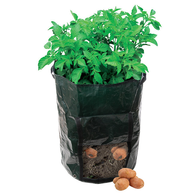 Silverline Aardappelplantzak 360 x 510 mm