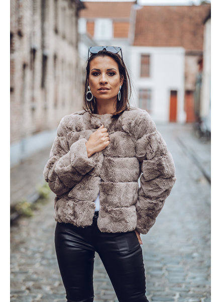 Beige Fur