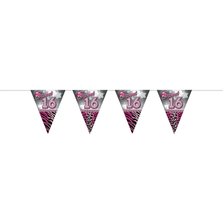 Sweet 16 Sixteen Vlaggenlijn | 10meter