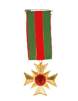 Medaille Ster | Leger Officier