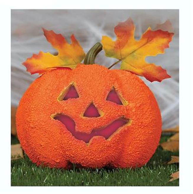 Halloween Pompoen |Pompoendecoratie