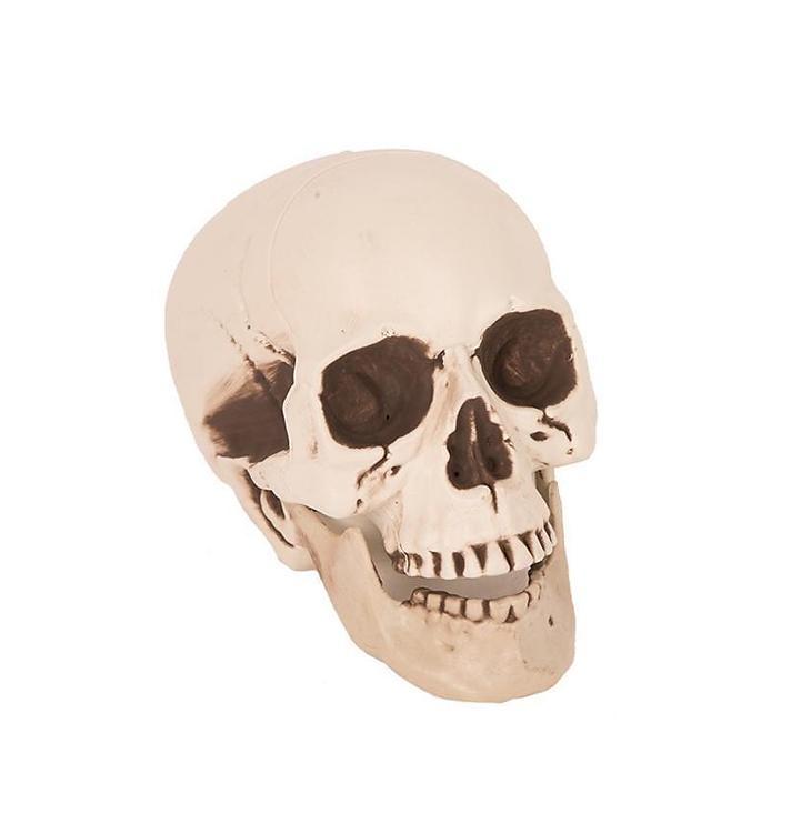 Mini Doodskop | Halloween Skelet