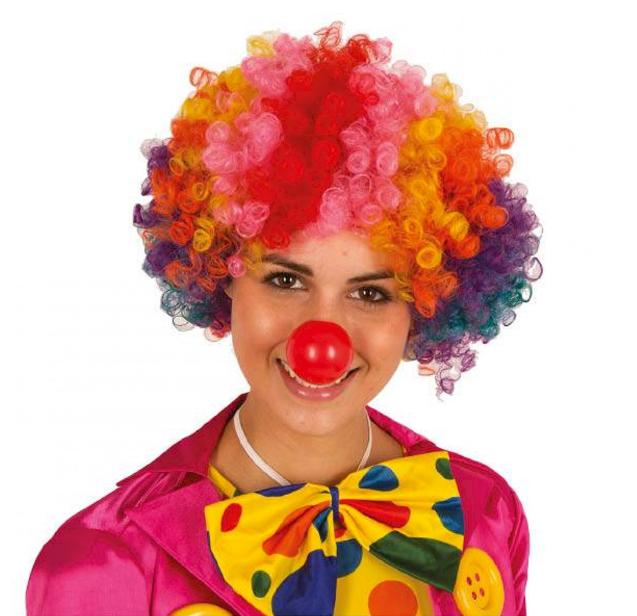 Pruik Clown Multicolor | Krullen