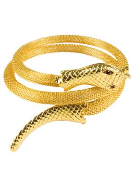 Armband/ Halsketting Slang | Goud