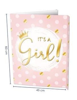 Windowsign | It's a Girl