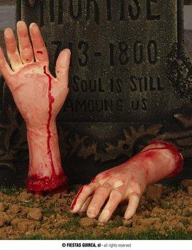 Afgerukte arm | Met Bloed