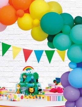 Ballondeco DIY Kit | Multicolor