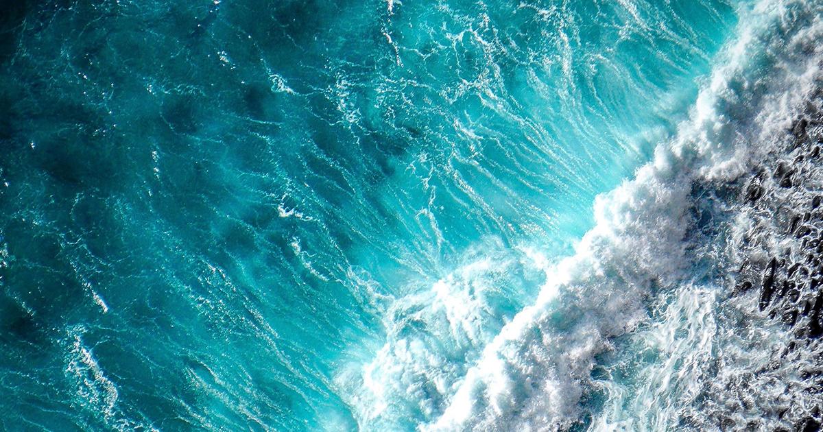 Ocean Love - ozeanfreundliche, zertifizierte Bio- und Naturkosmetik