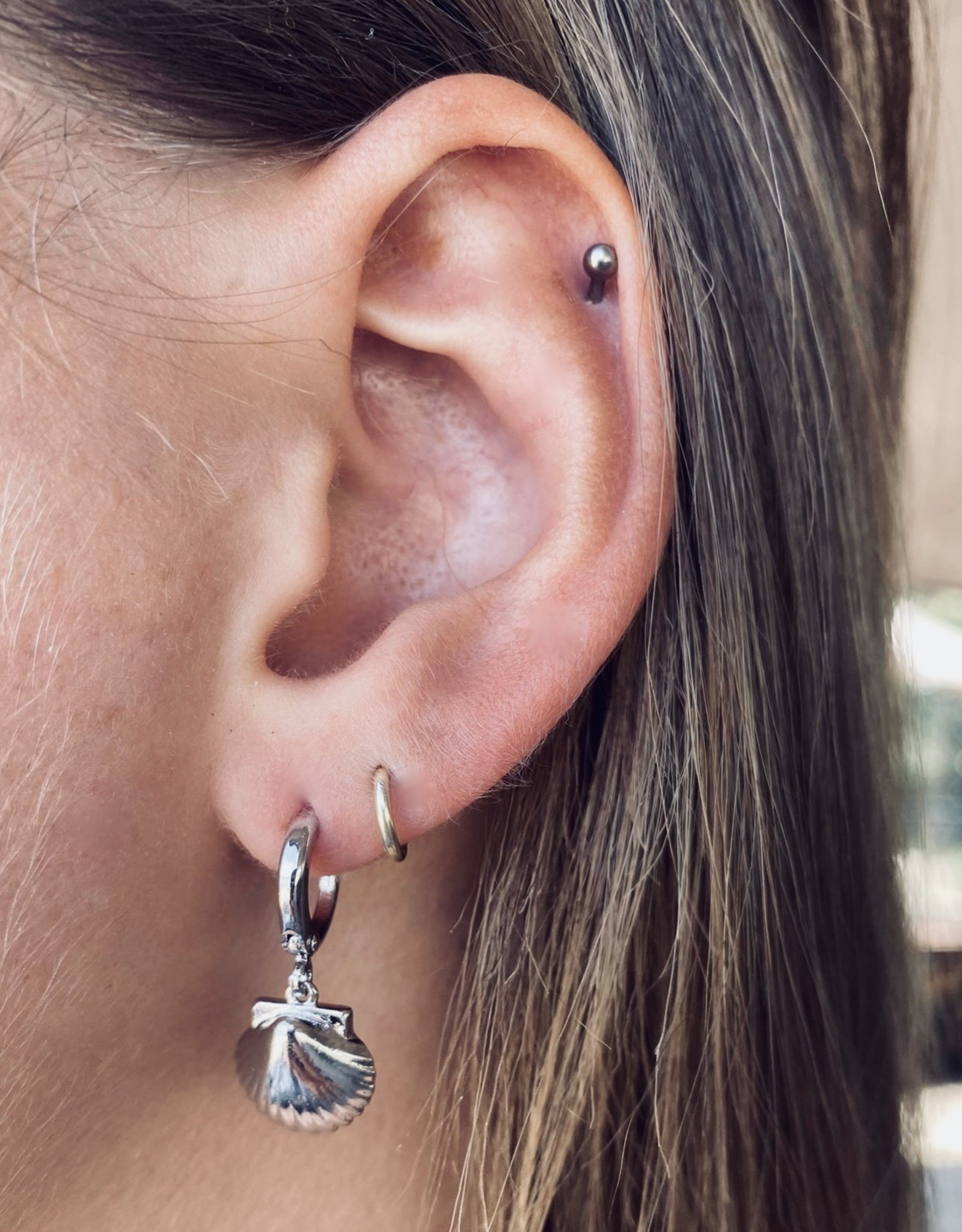 Schelpen oorbellen seashell zilver