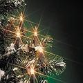 Kerstverlichting buiten 160 lampjes