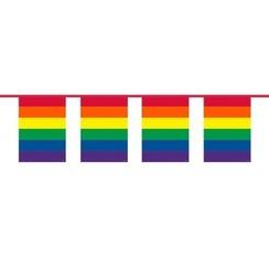 Vlaggenlijn regenboog 10 m