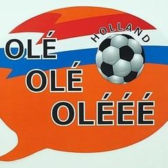 Raamsticker Ole Ole 28 x 23 cm