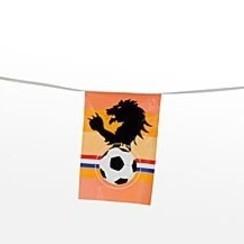 Vlaggenlijn leeuw en voetbal 10 m
