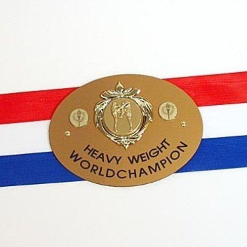 Kampioensgordel Boxing-champ NL