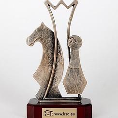 Trofee schaken 24cm