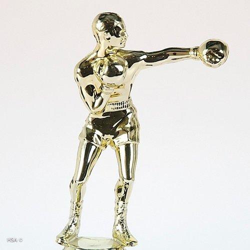 Trofee boksen Goud