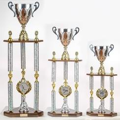 Beker Champion