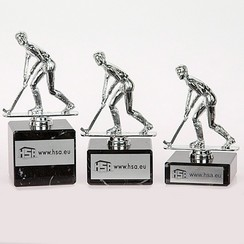 Trofee hockey heren