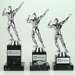 Trofee body building sterkste man