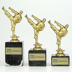 Trofee karate figuur goud