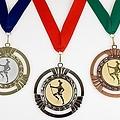 Supergrote medaille Gustava ø9cm