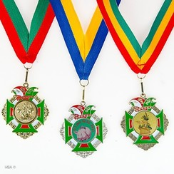Medaille Hubert 5,5x5cm