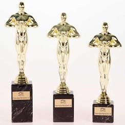 Trofee Victory Award