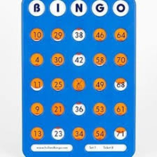 HollandBingo Bingo schuifplank blauw 1-75