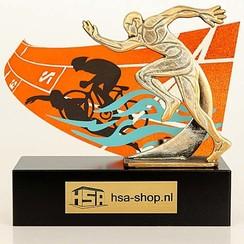 Trofee Triathlon 20,5 cm