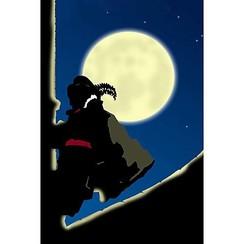 Banner Piet op dak 50 x 33 cm brandveilig