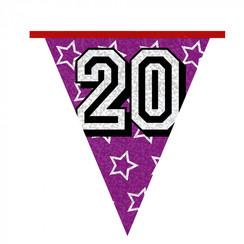 Vlaggenlijn 20 jaar 8 m