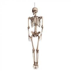 Skelet Halloween 160 cm