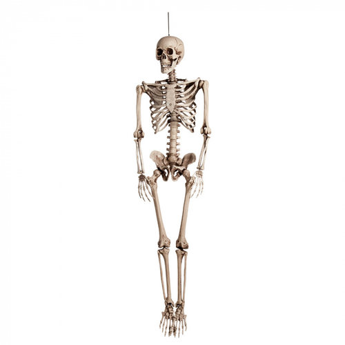 Boland BV Skelet Halloween 160 cm