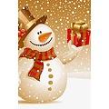 HSA Banner kerst 50 x 33 cm brandveilig