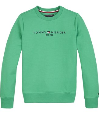 Tommy Hilfiger ESSENTIAL CN SWEATER COSMIC GREEN