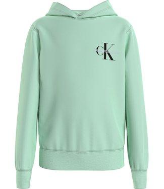 Calvin Klein MONOGRAM HOODIE GREEN