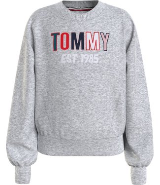 Tommy Hilfiger TOMMY TOWELING SWEATER GREY